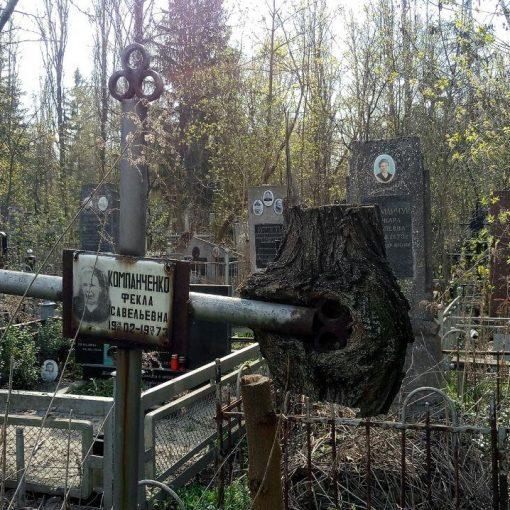 Металевий хрест врослий в дерево